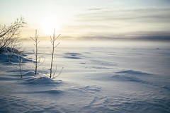 (DrowsyPotato) Tags: mist snow cold nature zeiss 35mm landscape frost sweden f14 sony frosty 350 carl 100 mm fe scandinavia za jmtland norrland swe jmtlands ln 18000 14 ilce7rm2