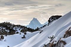 The Untersberg Plateau (adipdia) Tags: salzburg austria untersbergplateau