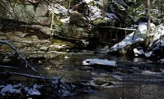 A Brisk Swim (vbd) Tags: snow river waterfall pentax connecticut newengland ducks ct handheld mallards k3 trumbull 2016 pequonnockriver vbd smcpentaxda55300mmf458ed parlorrockpark winter2016