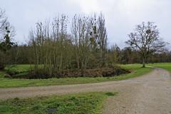 _DSC2857_DxO (Alexandre Dolique) Tags: castle chteau parc rambouillet d810