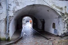 _DSC3892 (Rustam Bikbov) Tags: november tower castle balticsea gulfoffinland  viborg 2015   viipuri    leningradoblast    wiburg