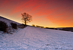 Sunrise on the slopes at Roseberry Topping. (paul downing) Tags: winter snow sunrise nikon 12 filters hitech singletree greatayton northyorkshire clevelandhills roseberrytopping northyorkshiremoors gnd pd1001 pauldowning d7200 pauldowningphotography