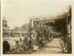 Pergola in the gardens of the Canford Cliffs Hotel, Ravine Road, Poole, Dorset (Alwyn Ladell) Tags: dorset poole pergola canfordcliffs ravineroad canfordcliffshotel