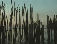 Otres Beach Breaker (Tara Barth) Tags: sunset beach sticks cambodia sihanoukville slidefilm expiredfilm fujivelvia otresbeach