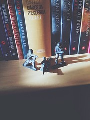 Toy Story. (alexander.anc) Tags: childhood children soldier book war toystory books bookshelf guns boyhood childish toysoldiers plasticsoldier kidswithguns liketoysoldiers