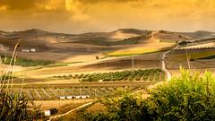 AgroEricino (Michele Naro) Tags: italien italy landscape italia campagna land sicily serro landschaft italie sicilia sicile sizilien samyang85mmf14 agroericino