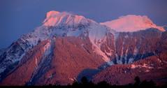 Lhilheqey Alpenglow Feb 2/2016 (Dru!) Tags: pink blue winter sunset snow canada lady bc britishcolumbia fresh cascades alpenglow chilliwack cascademountains fraservalley cheam cheamrange lhilheqey janfeb2016