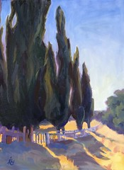 Miner's cemetery (Serendipity Artist) Tags: california trees landscape cypress