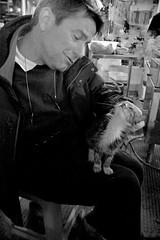 Zhuhai 1/12 (johey24) Tags: china street people dog cats pets animals raw candid spca zhuhai peoplewatching abandonedanimals streetanimals animalsarenottoys momentsoflove gowellyoulittlebeauty animalsneedlove animalsarealifelongcommitment