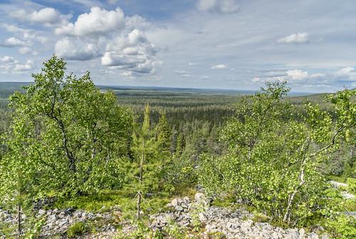 Parc National de Pyhä-Luosto
