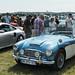 Austin-Healey 100/6 1959
