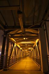 IMG_5962 (Mike Pechyonkin) Tags: bridge night footbridge moscow covered banister   2016  tunne