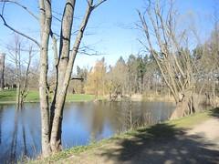 Im Volkspark Mariendorf, Berlin, NGIDn590677764 (naturgucker.de) Tags: naturguckerde cwolfgangkatz 915119198 92636685 865714930 ngidn590677764