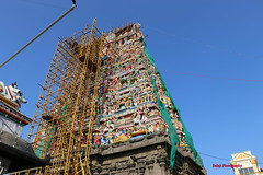 Temple Festival (Balaji Photography - 3,000,000 Views and Growing) Tags: city india color tower art colors festival canon temple artwork colours artistic fineart colourful shiva hindu chennai canondslr canoneos artisans carvings chanting hymns indianart mylapore indiatravel indiatourism kapali incredibleindia templearchitecture templesofindia chennaiphotos canon70d chennailife kapalitemple chennaireflections chennaimusicfestival indiatemplearchitecturetempleindiaindia