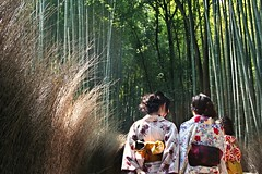 Ballad in bamboo grove (__Thomas Tassy__) Tags: camera people color art nature girl beautiful japan canon wow wonderful photography eos 350d photo amazing nice fantastic kyoto asia photographer shot superb artistic grove awesome great picture atmosphere pic bamboo best stunning kimono moment capture beau magnifique prise joli meilleur genial