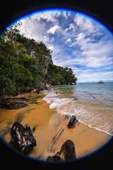 Abel Tasman - 03 (coopertje) Tags: ocean park newzealand beach coast national southisland abel tasman nieuwzeeland
