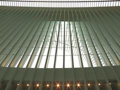 Oculus #3 (Keith Michael NYC (1 Million+ Views)) Tags: nyc newyorkcity ny newyork path manhattan worldtradecenter calatrava wtc oculus santiagocalatrava downtownnewyork downtownmanhattan transportationhub 1wtc oneworldtradecenter