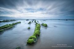 Blue & Green (Pruden Barquin) Tags: naturaleza nikon paisaje fotografia prudenbarquin