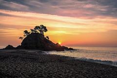 Cala Cap Roig (aDpPhoto) Tags: sunset sun colors lights nikon girona d750 costabrava caproig