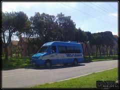 Transportes Reina 456 (Los Buses Y Camiones De Bogota) Tags: reina colombia bogota autobus transportes 456 busologia
