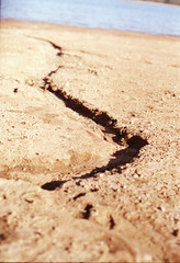 Crevice (sharyn.ashley) Tags: film 35mm canon path details dirt cracks crevice filmisnotdead