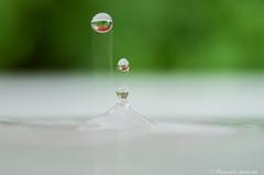 Fuse de bulle! (pascaleforest) Tags: macro green water nikon eau vert passion bulle fuse fracheur d7200