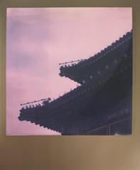 Beihai (GemR97) Tags: polaroid sx70 beijing mint instant roidweek impossibleproject slr670m