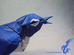 Japenese White-Eye (Rydos) Tags: paper origami korean satoshi designed whiteeye japenese kamiya kamiyasatoshi hanji koreanpaper japenesewhiteeye
