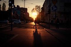 Flame (ewitsoe) Tags: street city light sunset urban sunlight man lights evening crossing sundown bright dusk tram poland polska pedestrian pozna ewitsoe