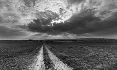 road towards the clouds (Ralf Pelkmann) Tags: road light grass contrast angle wide rays