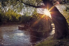 heated moment (cherryspicks) Tags: light sun building mill river outdoor slovenia flare sunburst mura