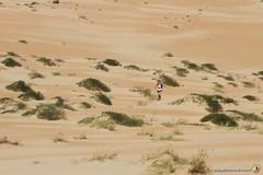 3-Oman-Desert-Marathon-Day-6_0037