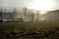 November morning mist at Lake Salmijrvi (Salmi recreation area, Vihti, 20151129) (RainoL) Tags: november winter mist fog finland geotagged fin uusimaa 2015 nyland salmi vihti vichtis 201511 salmenulkoilualue salmirecreationarea 20151129 geo:lat=6036903368 geo:lon=2450239148
