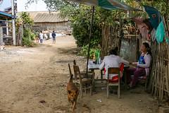Street near Talat Phosi market, Luang Prabang, Laos (inchiki tour) Tags: road street travel people photo asia southeastasia market local bazaar laos luangprabang    louangphrabang        phosi   talatphosi