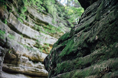 Starved Rock 2015 (TrheberlingProductions) Tags: red chicago rock waterfalls starved sonydslr sonya99