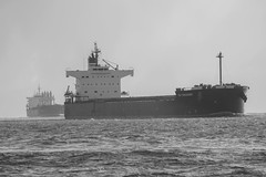 DSC_1612 (zeynepcos) Tags: sea blackandwhite bw ship istanbul bosphorus