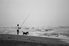 Perros en la playa (Cecilia Marino fotografia) Tags: dog pet beach playa perro miramar mascotas