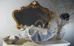 Gold Sink 2 (LittleGems AR) Tags: ocean sea sculpture sun beach home statue stone giant bathroom shower gold aquarium soap sand bath crystals hand contemporary unique decorative shell craft style toilet towel clam basin special clean shampoo taps wash ornament gift present pearl reef spa figures gems opulent gem fossils oneoff clamshell mollusks cloakroom bespoke personalised tridacna sculpt crafted gigas facetowel