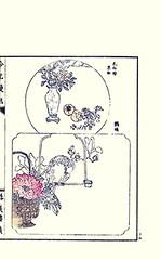 Top  pomegranate, Japanese persimmon and grape; Bottom  tree peony, magnolia and cockatoo (Japanese Flower and Bird Art) Tags: flower tree bird art japan japanese book picture pomegranate peony magnolia persimmon cockatoo vitaceae grape woodblock ginko nihonga kaki cacatua vitis adachi paeonia diospyros berberidaceae punica granatum magnoliaceae lythraceae vinifera paeoniaceae cacatuidae suffruticosa readercollection