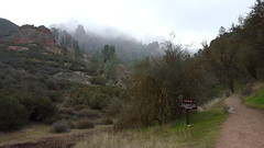 Starting our hike in the morning fog