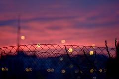 Bokeh Lights - Dusk (CAUT) Tags: winter light sunset sky espaa luz silhouette fence atardecer reja twilight spain nikon bokeh dusk january magenta enero cielo desenfoque invierno silueta mad crepusculo malla anochecer 2016 d610 lemd caut madridbarajas nikond610