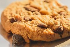 Nom Nom (rpcann) Tags: macro cookie chocolatechip