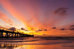 Grange 14.2 (Nathan Godwin) Tags: sunset summer panorama seascape beach water photography pier sand jetty sony sunsets valentines southaustralia grange valentinesday beachscape 2016 sunsetporn adelaidebeaches sunsetphotography australiansunset grangejetty grangebeach sonyphotographer sunsetseascape sonya77 southaustralianbeaches