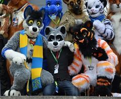 Nordic Fuzzcon 2016 517 (finbarzapek / SeanC) Tags: costumes animal furry convention furries nordic con fuzz nfc fursuit 2016 fursuits fuzzcon nfc2016