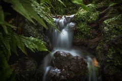 Madeira 2016 little Waterfall (michaelbeyer_hh) Tags: madeira sonya7s