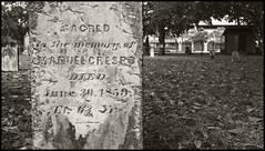 Sacred to the Memory of Manuel Crespo (hamsiksa) Tags: bw cemeteries blackwhite florida graveyards graves tombs churchyards 1859 burialgrounds oldestcity saintaugustine buryingground 1565