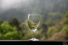Potion of Green! (Pradeepprakash) Tags: summer elephant mountains restaurant driving roadtrip hills wineglass bison forests ooty nilgiris conoor