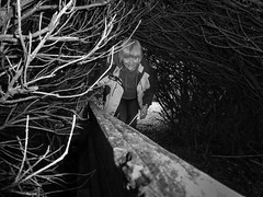 79/365 Who's that trip trapping over my bridge? (NSJW photos) Tags: bridge me woodland dark woods low spooky troll twigs 79 selfie hunched hunchedover 79365 trollsbridge nsjwphotos 793652016
