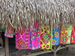 Embera Village (FayeB6) Tags: panama embera emberavillage