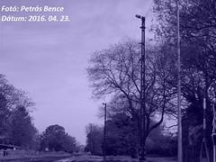 Sopron-Dli, 2016. 04. 23. (petrsbence) Tags: hungary sopron vonat lmpa vast dliplyaudvar dlipu gysev